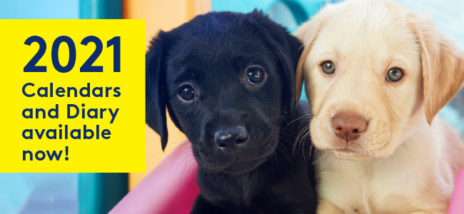2021 Calendars and Diary available now! 2 Labrador puppies, a black and a yellow, feature in the image
