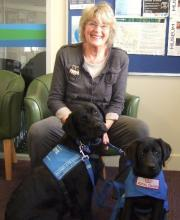 Jeni sitting down with two black Labradors at the SED offices in Kensington